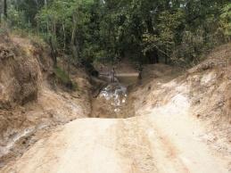 Palm Creek entry - OTL