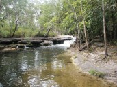 Cockatoo Creek - OTL