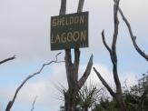 Sheldon Lagoon signage